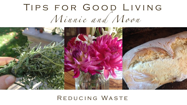 Quick Tips from Minnie and Moon Reducing Waste